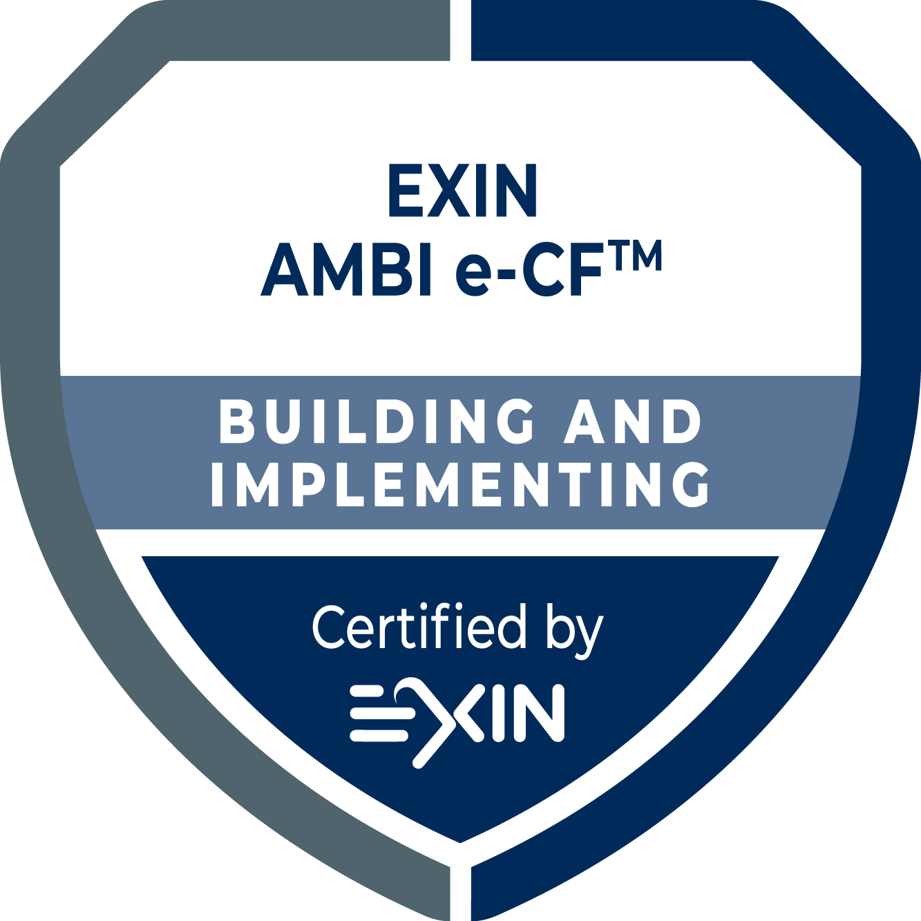 EXIN AMBI e-CF®: Building and Implementing