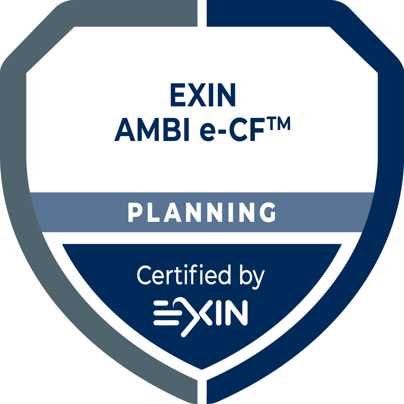 EXIN AMBI e-CF®: Planning
